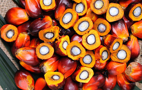 Malaysia Palm Oil Production